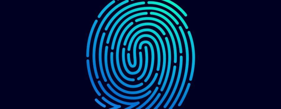 fingerprint maze